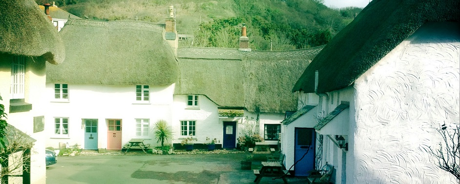 Hope Cove thatched cottages